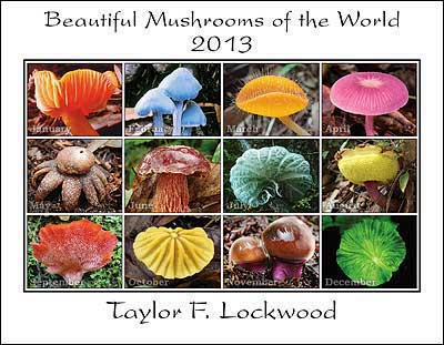 Click for: 2013  Beautiful Mushrooms of the World Calendar