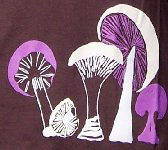 Organic Wild Mushrooms Tee