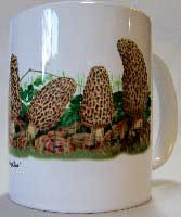 Full Color Morel Row Coffee Mug